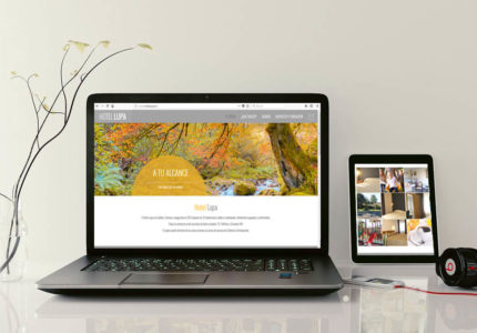 Diseño de paginas web 2018 PRISMA ID